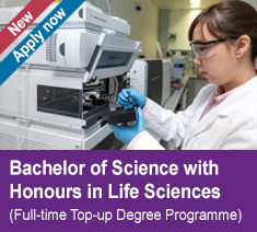 Bachelor of Science with Honours in Life Sciences